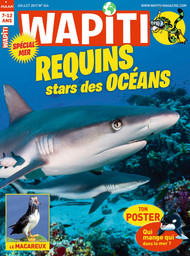 Wapiti : mission science, passion nature   Ruffenach, Pascal. Directeur de publication