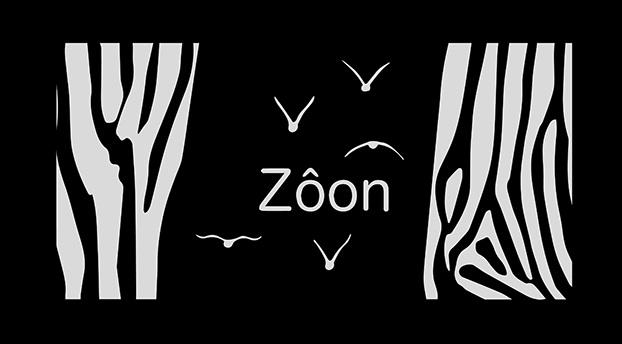 ZÔON, exposition photo et installation plastique par l'artiste Tec-Tec |
